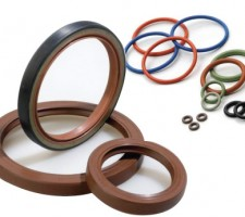 Orings & Oil Seals